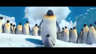 Пингвины.Арам зам зам.