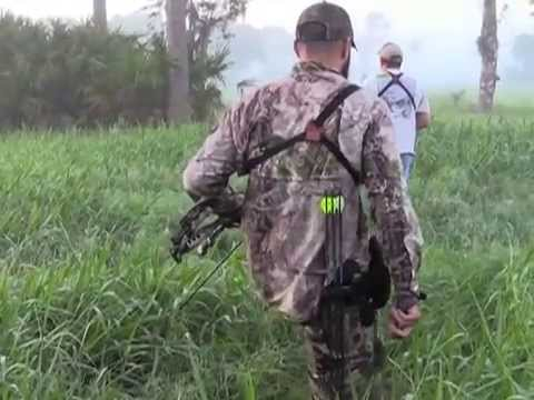 Bowhunting Wild Hogs in Okeechobee, Florida