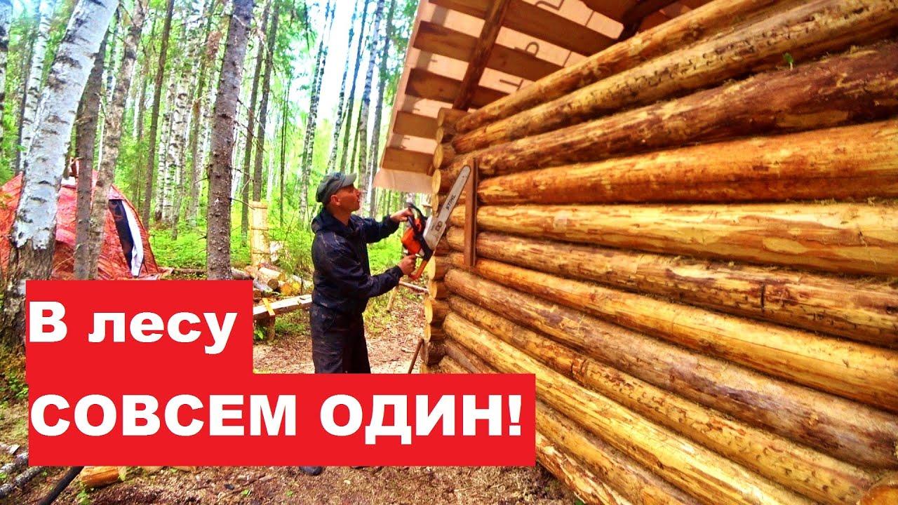 В лесу совсем ОДИН! Загадки леса. Врезал окно в избе. Нашел рембазу 60-х годов.