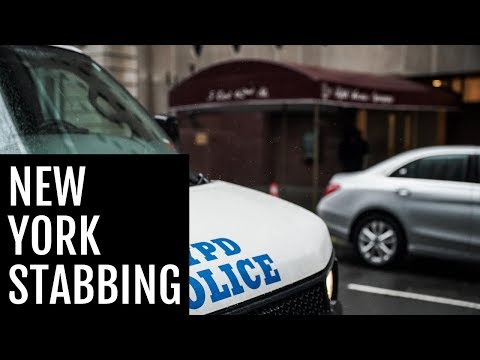 hanukkah-machete-suspect-indicted-in-new-york-on-six-counts-of-attempted-murder