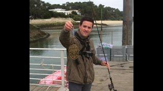 Pêche de la seiche sur le bassin d'arcachon