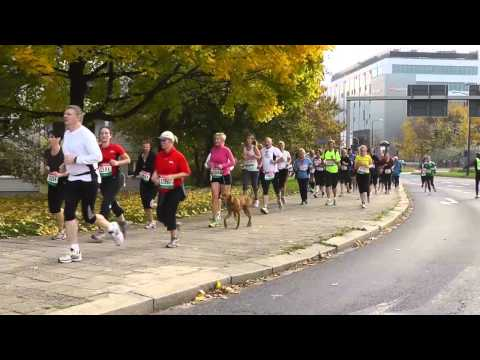15. Dresden - Marathon 2013: Der Lauf