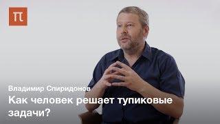 Современные исследования инсайта — Владимир Спиридонов