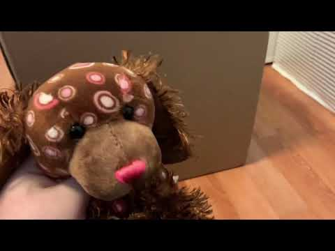 Webkinz Signature lot unboxing and cleaning
