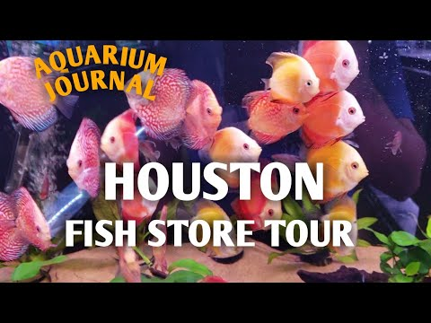 Fish Store Tour Houston TX