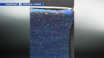 Bed bug infestation in SEPTA bus seat caught on video