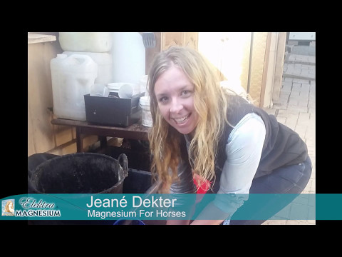 Jeané Dekter About Magnesium For Horses