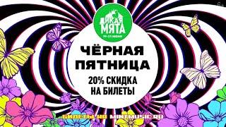 Дикая Мята - Чёрная пятница! 6+