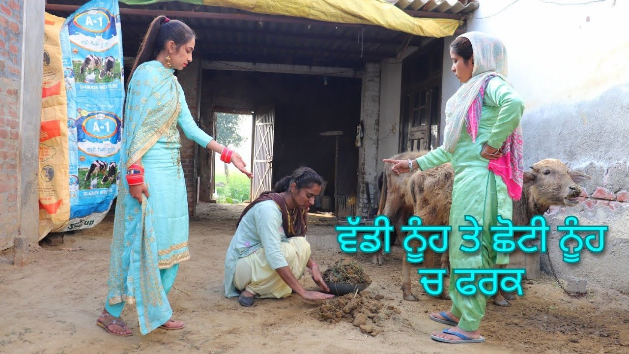Baddi Nuh te Choti Nuh ch Farak... Punjabi short movie... Short video