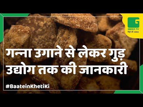 Organic Jaggery(Gur) In Baatein Kheti Ki On Green TV