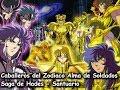 Los Caballeros del Zodiaco  Alma De Soldados saga de Hades part2