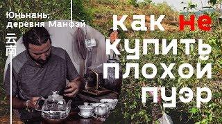 Как китайцы продают плохой чай пуэр. Юньнань, деревня Манфэй