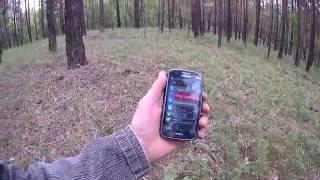 видео Как не заблудиться в лесу и выйти из леса, если заблудился