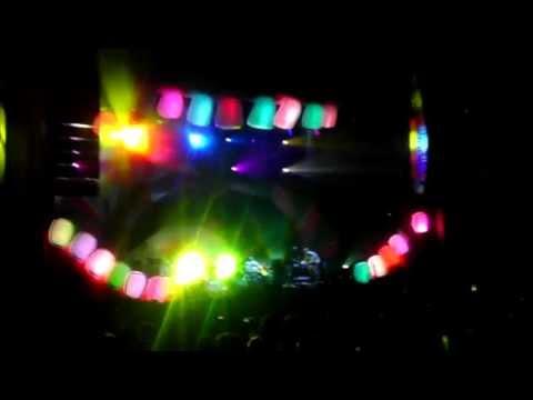Animal Collective - My Girls [Live]