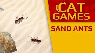 CAT GAMES - Sand Ants (Videos for Cats to watch) 1 Hour 4K 60FPS