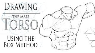 how to draw muscular body