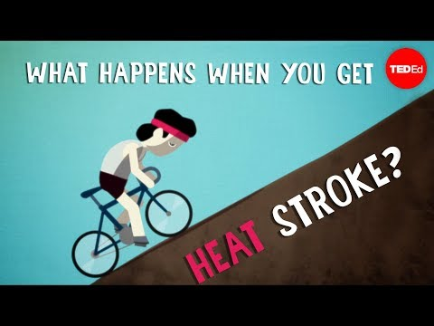 What happens when you get heat stroke? - Douglas J. Casa