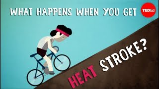 What happens when you get heat stroke? - Douglas J. Casa Mp3