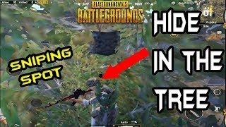How to HIDE INside THE TREES - Best SNIPING Spot in PUBG MOBILE - PlayerUnknown