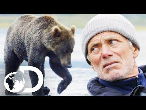 Jeremy Wade Gets Dangerously Close To A Wild Bear   Jeremy Wade's Dark Waters