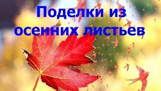 Вироби з листя / Поделки из осенних листьев своими руками