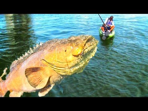 Monster Fishing Authority ++ Big Fish Kayaking #@ January 2018