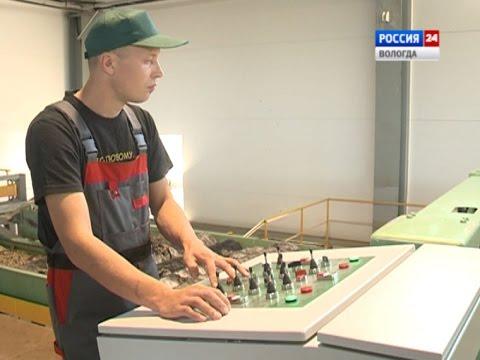 Новый фанерный завод открылся в Соколе