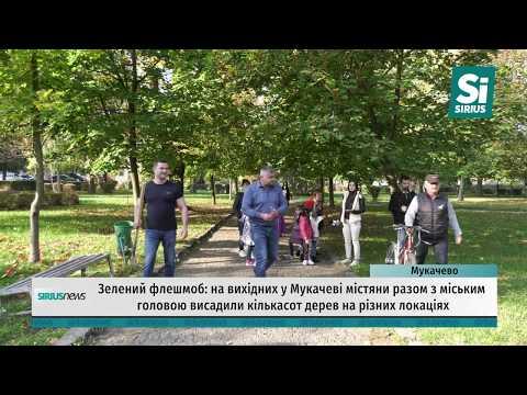 Зелений флешмоб: на вихідних у Мукачеві