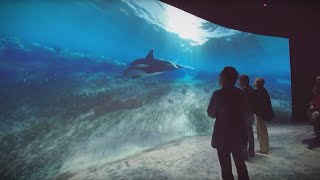 National Geographic Encounter: Ocean Odyssey on Times Square in NYC (US) | Kraftwerk LT