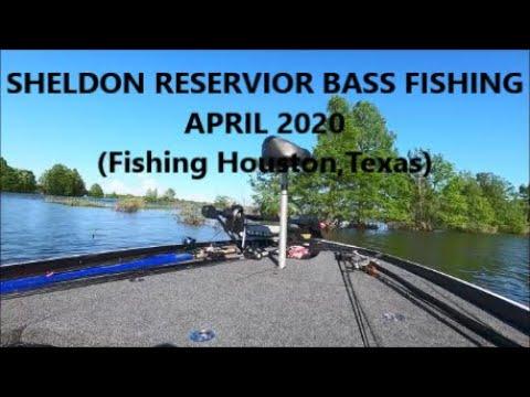 BASS FISHING SHELDON RESERVOIR IN APRIL 2020 (Fishing Houston, Texas)