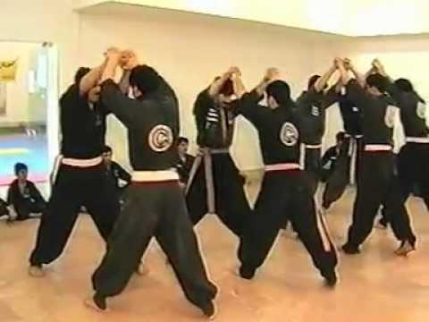 Kung Fu To A Azerbaijan Ws Irani Youtube