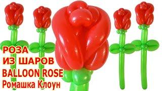 РОЗА ИЗ ШАРИКОВ как сделать своими руками How to Make a Balloon Rose TUTORIAL