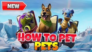 Fortnite: How to Pet Pets In Game Tutorial | Petting Gameplay Showcase: Dog, Fox, Dragon Update 8.40