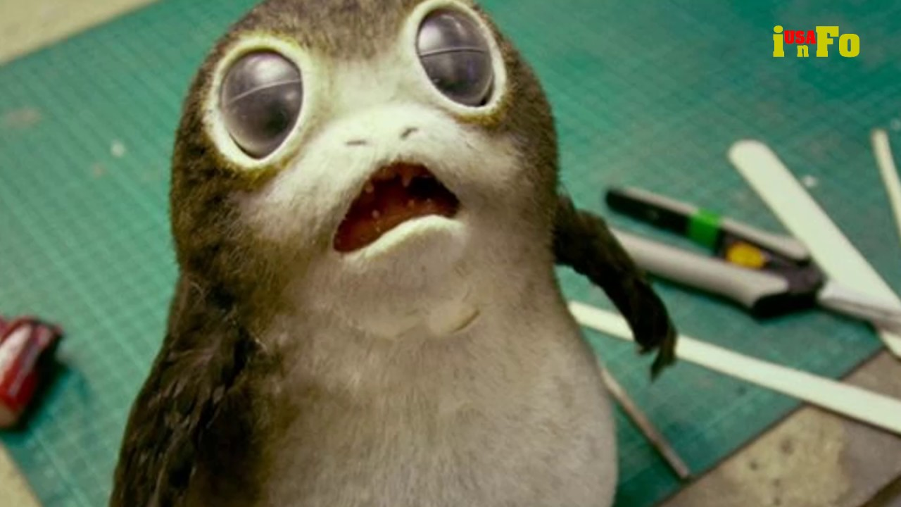 Star Wars' cutest new alien has a name and a backstory