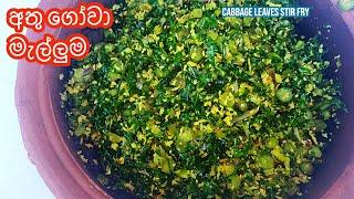 අත ගව මලලම  Cabbage Leaves Stir fry