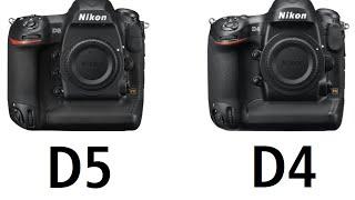 Nikon D5 vs Nikon D4