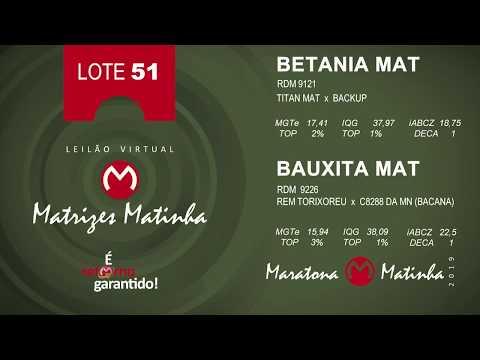 LOTE 51 Matrizes Matinha 2019