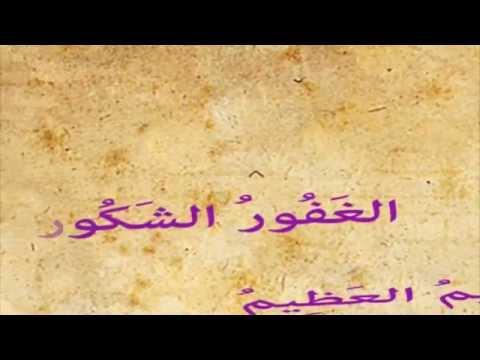 Tamer Hosney Asmaa Allah lyric clip subtitle kurdish HD quality تامر حسني اسماء الله