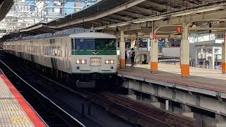 快速鎌倉紅葉号 横浜駅発車 185系