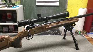 Gambar cover Savage 12 FV with Boyds Stock - Results with 52 gr. SMK and H380