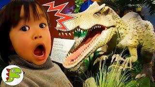 おでかけ 恐竜に会いに行ったよ❤ダイナソー Toy Kids トイキッズ anpanman thumbnail