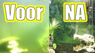 UV-C lampen/filtering in het aquarium 5 feiten & 5 mythes/fabeltjes