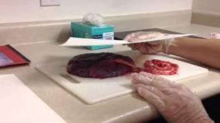 How to make a placenta print
