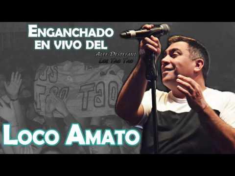 El Loco Amato | Enganchado en vivo 2017 (Alee Destéfani)