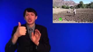 Налогоплательщики США борются с афганскими наркотиками, но индустрия лишь расцветает(, 2015-04-15T18:30:48.000Z)