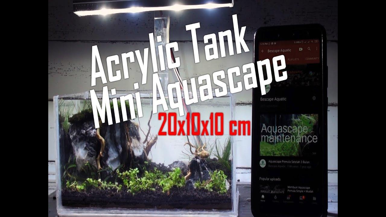 Membuat Aquascape Mini Tanpa CO2 dan Filter - YouTube