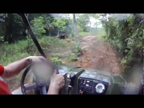 Palau rainforest trip
