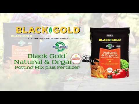 Black Gold Natural and Organic Planting Mix