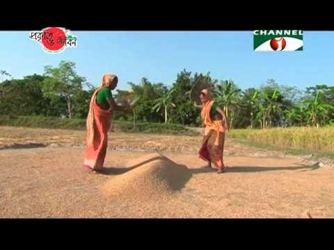 Nature and Life - Episode 200 (Seasonal Diversity of Bangladesh)