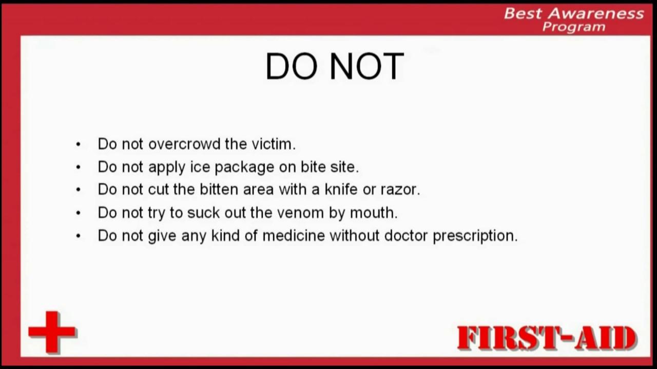 do not in snake bite, precautions in snake bite, preventions in ...